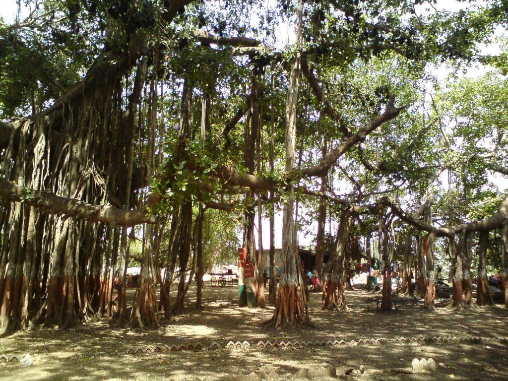 Kabirvad near Champaner, Halol, Vadodara